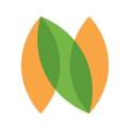 nutbox Logo