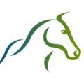 One Stop Horse Shop Australia Logo