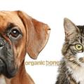 Organic Bone Logo