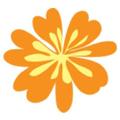 outdoor DIVAS Logo