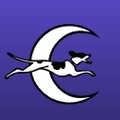 overthemoondogs Logo