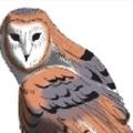 Owl's Treasures, Logo