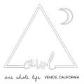 OWL Venice Logo