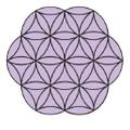 paavaniayurveda Logo