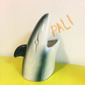 Pali Swim Logo