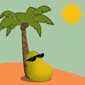 PapayaSun USA Logo