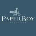 Paper Boy Wallpaper Logo