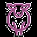 Paradise Fibers Logo