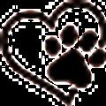Paws Passion Logo