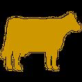 Pbs Animal Health Logo