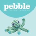 Pebblechild Bangladesh Logo