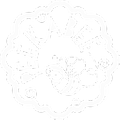 peekabee Logo
