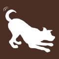 P.L.A.Y. Logo