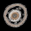 Pimary Logo