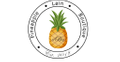 Pineapple Lain Boutique Logo