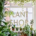 Plant Shop Seattle Logo