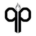 Platinum Podz Logo