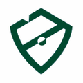 PlayBrave Logo