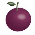 Plumtree Baby Logo