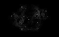 PP LLC Logo
