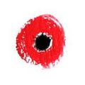 PoppyLab Logo