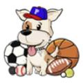 PoshPuppySports USA Logo