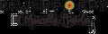 Power Poppy Logo