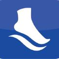 PowerSteps.com USA Logo