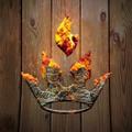 Premier Grilling USA Logo
