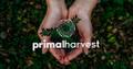 Primal Harvest Logo