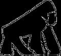 Primate Movement Logo