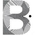 PROJECT B USA Logo