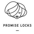 Promise Locks Logo