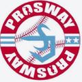 ProSway Gloves logo