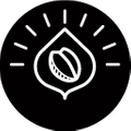 Pure Intentions Coffee Logo