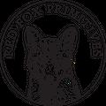 Red Fox Primitives Logo