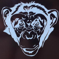 Reefmonkey Logo