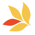 Rise Wellness logo