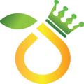 royaljuice.co.za South Africa Logo