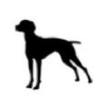 Rusty Dog Coffee Logo