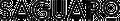 Saguaro Home Logo