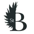 Saint Bustier logo
