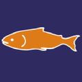 salmoncove.com Logo