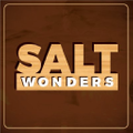 Salt Wonders Logo