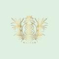 Sapelo Skin Care Logo