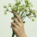 SATOMI KAWAKITA JEWELRY|Handmade Jewelry Logo