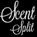 Scent Split Logo