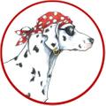 Sea Dog Shop logo