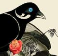 Seagull Books India Logo