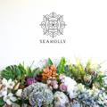 seaholly Logo